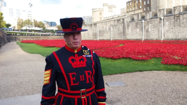 Poppies for British soliders who died in WWI at the Tower of London.