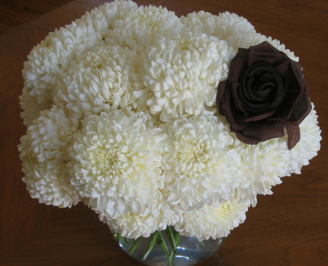 Chrysanthemums_white